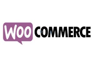 Κατασκευή WooCommerce eshop