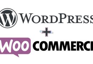 Αναλαμβάνω οποιαδήποτε εργασία πάνω σε WordPress – Woocommerce